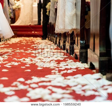Closed up white flower petals on red carpet floor in church at Christian wedding ceremony. Beginning of life with flower petals concept.