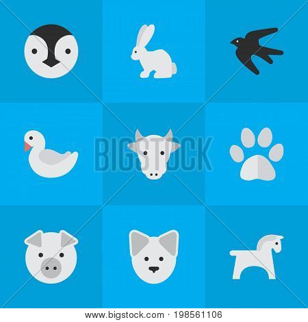 Elements Foot, Kine, Wolf And Other Synonyms Bunny, Pig And Piggy.  Vector Illustration Set Of Simple Animals Icons.