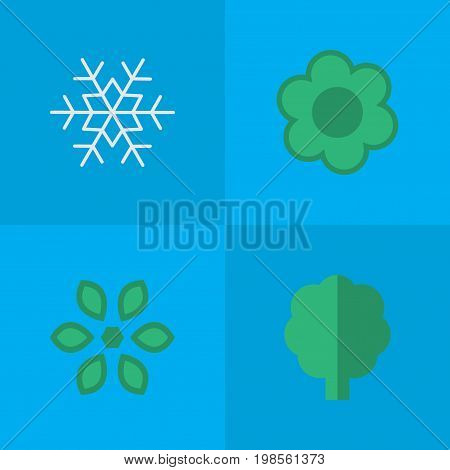 Elements Flower, Wood, Flake Of Snow And Other Synonyms Forest, Flake And Blossom.  Vector Illustration Set Of Simple Gardening Icons.