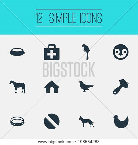 Elements Chicken, Pet Plate, First Aid And Other Synonyms Antarctica, Beak And Dog.  Vector Illustration Set Of Simple Zoo Icons.