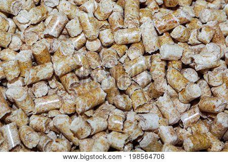 Wood pellets  . Biofuels  . The cat litter .