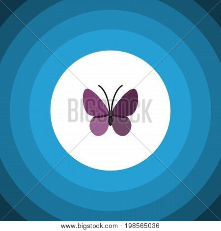 Violet Wing Vector Element Can Be Used For Monarch, Summer, Insect Design Concept.  Isolated Summer Insect Flat Icon.