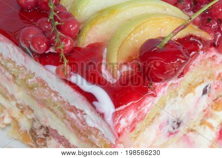 Close up Fruit cake with red currant. Fruit Cake with fresh red currant on the plate closeup