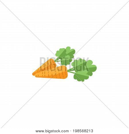 Root Vegetable Vector Element Can Be Used For Carrot, Root, Vegetable Design Concept.  Isolated Carrot Flat Icon.