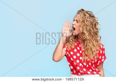 Young curly woman in casual clothing holding hand near mouth shouting on blue background.