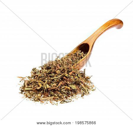 Dry Alfalfa Medicago sativa on the wooden spoon. Macro photo.
