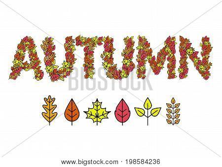 Autumn Design Leaves of trees. Vector illustration.