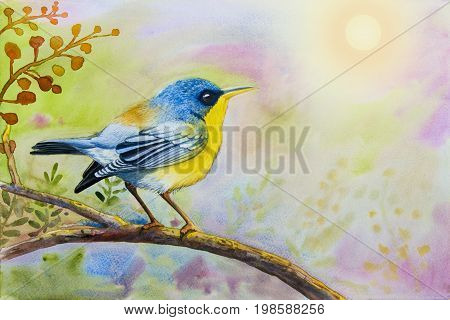 Watercolor landscape original painting on paper colorful of alone bird on a branch amidst beautiful and emotion in sky morning sun background