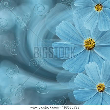 Floral turquoise beautiful background. Flower composition. Postcard with turquoise flowers of daisies on a blue-turquoise background. Nature.