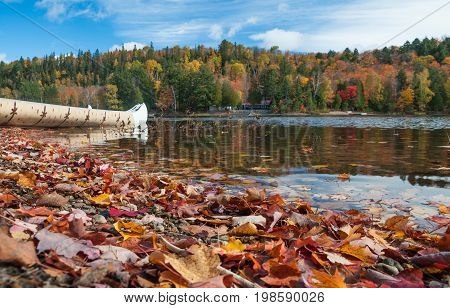 Autumn landscape with water reflection and colorful fallen leaves. Ontario Canada