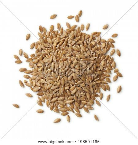 Heap of organic Einkorn wheat seeds on white background