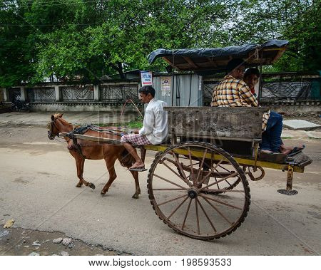 Horse Cart On Street In Bodhgaya, India
