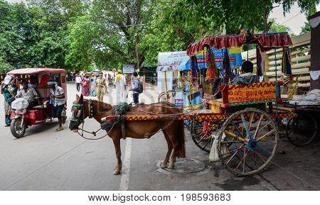 Horse Cart On Street In Bodhgaya, India