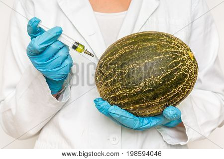 Gmo Scientist Injecting Liquid From Syringe Into Melon