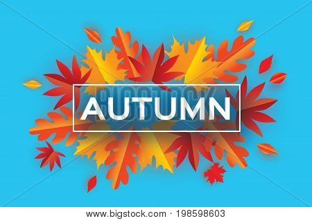 Autumn Paper Cut Leaves. Hello Autumn. September flyer template. Rectangle frame. Space for text. Origami Foliage. Maple, oak. Fall poster. Blue background. Vector illustration