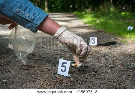 Investigator Collects Evidence - Crime Scene Investigation