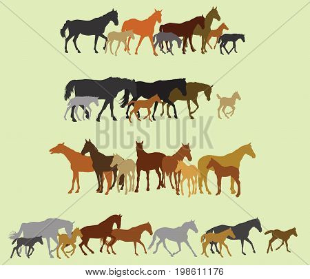 Group of black grey orange brown silhouettes of horses (stallions mares and foals) standing walking running on green background. Vector illustration.