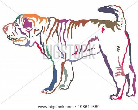 Colorful decorative portrait of standing in profile Shar Pei vector isolated illustration on white background