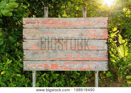 Old vintage empty board sign in the forrest with sun rays in background. Copy space available for text or message