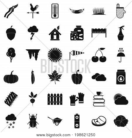 Diet vegetable icons set. Simple style of 36 diet vegetable vector icons for web isolated on white background