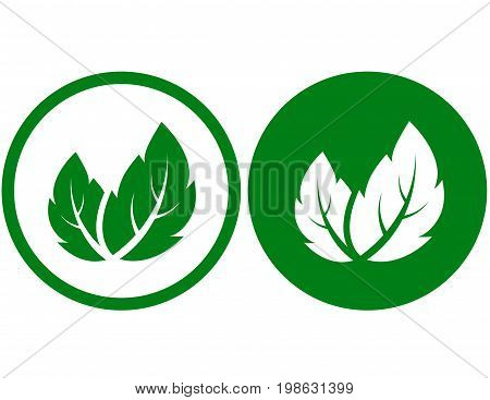 eco natural sign with green leaves icons
