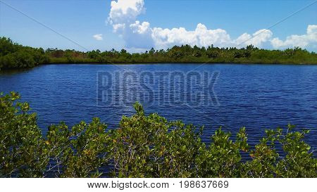 Beautiful lake surrounded by lush green foliage overseen by a light blue sky with billowing clouds.