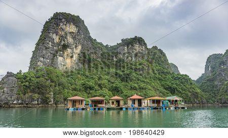 Ha Long Bay Vietnam - December 02 2015: Floating fishing village and rock islands in Halong Bay Vietnam Southeast Asia. UNESCO World Heritage Site.