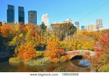 Manhattan Central Park with bridge and skyscraper in Autumn in New York City