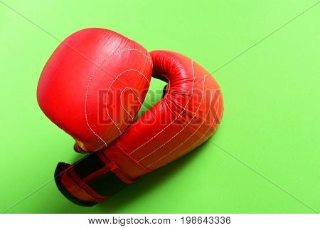 Sport Equipment Isolated On Light Green Background. Professional Box