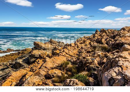 Triangular flock of migratory birds over the surf. Place where two oceans meet. Mysterious South Africa. The concept of extreme and exotic tourism