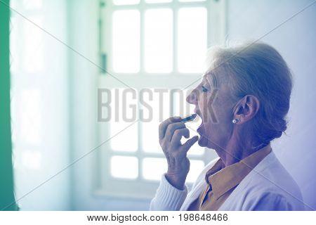 Senior Woman Dress Up Daily Lifestyle