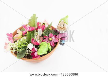 Pot with flowers of different colors and a leprechaun hanging to the side on a white background.