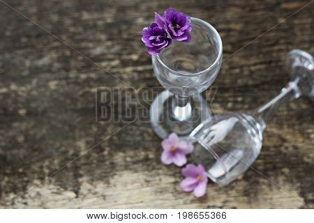 The flowers are violets. Floral background.The flower in the glass. A few small violet flowers in a transparent glass glasses.Glasses on the wooden surface.