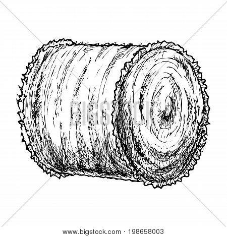 Roll of hay, sketch of agricultural farming hay. Vector