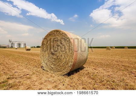 Hay bales dry in the field. On the background agricultural silos for cereals. Blue sky with clouds. Agricultural landscape.