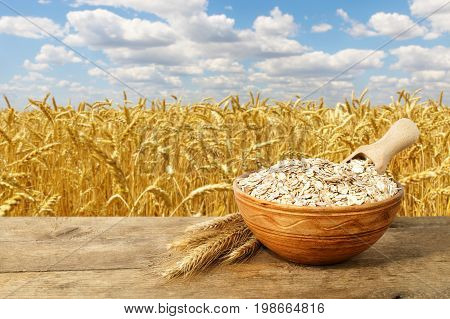 oat or wheat flakes in bowl with ripe cereal field on the background. Golden field and blue sky. Uncooked porridge