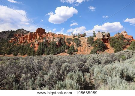 Red Canyon in Dixie National Forest. Utah. USA
