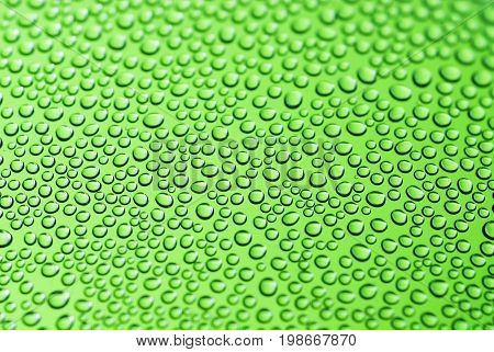 Macro shot of water drops on green background