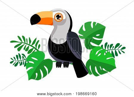 Toucan vector illustration, Toucan with green leaves
