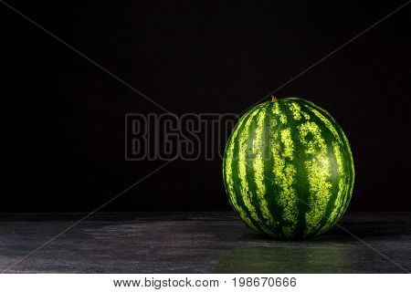 A whole single striped watermelon on a black table background. A green watermelon full of sweet nutrients. Big exotic berries for desserts. Nature, refreshment, freshness concept. Copy space.