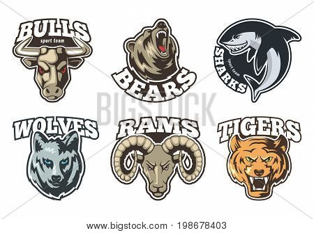 Sport labels set with different animals. Company mascot design. Sport logo with animal, mascot furious for sport team illustration vector