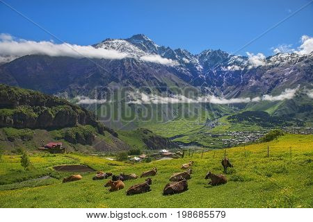 magnificent mountain landscape in the Caucasus Mountains, Kazbegi region, Georgia