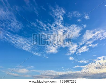 Azure sky with multiple white puffy clouds