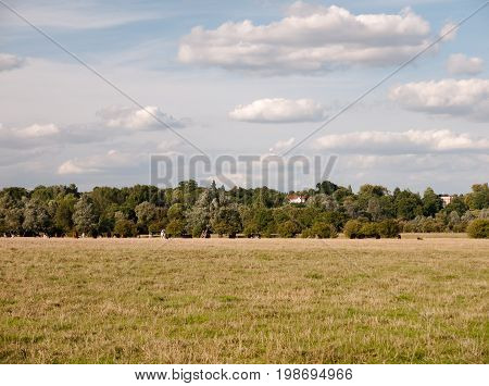 An Empty Country Field Of Grass With A Cloudy Blue Sky Above And A Treeline