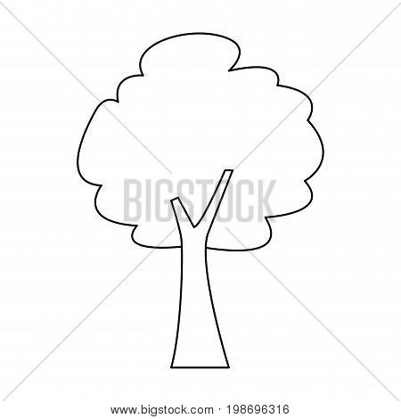 tree forest foliage natural ecology vector illustration
