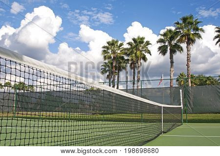 Tennis court net with some palm trees in the background, on a sunny and cloudy summer afternoon. Tampa, Florida, USA.