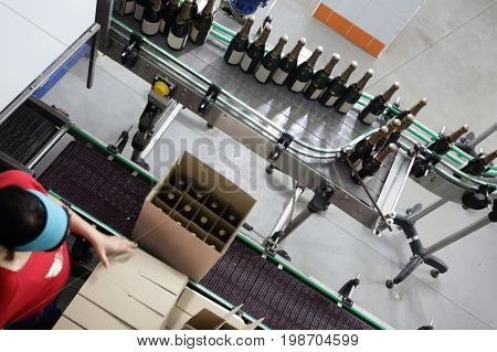 Worker packing bottles of wine on a winery conveyor