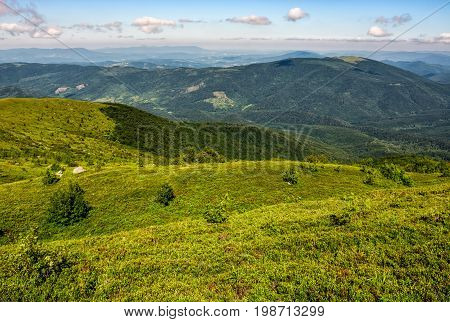 Grassy Hillside Of Carpathian Mountain Range