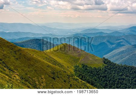 Small Peak On Hillside With Forest