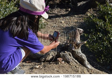 LAGUNA NIGUEL, CA - JULY 21, 2017: Unknown girl takes a picture of a fairy home on the Aliso Summit Fairy Trail.